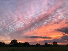 Red Sky At Night (Marc Sayce) Tags: sunset sundown red pink orange clouds trees ludshott common headley down grayshott hampshire national trust heathland summer autumn september 2018