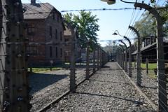 Auschwitz (Umbrella_Corp_06500) Tags: auschwitz campdelamort pologne nikon3200 birkenau ss nazi polonais déportation souffrance allemagne simoneveil juifs travel camps mémoire soleil morts souvenirs russie guerre 3945 shindler train israel