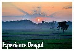 Experience Bengal - Winter Landscape (pallab seth) Tags: indianlandscapephotography landscape bengal india nature winter rural village sunrise fields dawn sun mist trees indian