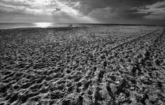 Greys (Svendborgphoto) Tags: nikkor nikon nature nautical nikond800 denmark d800 dof detail monochrome water waterscape landscape 1424mm 14mm bw blackandwhite sky sand