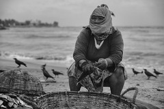 Worker in fish market, Negombo (Buck777) Tags: acros xh1 fuji negombo srilanka blackandwhite beach fishworkers woman