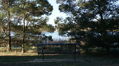 This bench has lost ts view! (spelio) Tags: act canberra australia