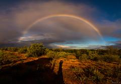 Drive-by Shooting (Eifeltopia) Tags: desert westernaustralia australien regenbogen shadow shooting panorama funny story car cloudy wolken regnerisch moody büsche shrubbery excursion trip rainbow colors farben