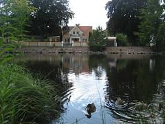 La casa frente al lago (Elbellavistas) Tags: lake lago nature trees arboles water agua laguna house casa lagoon outdoor arbol tree ducks patos