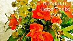 (★ Percy Germany™ ᵀᴴᴱ ᴼᴿᴵᴳᴵᴻ) Tags: blumenstraus rosen orangerosen silvia geburtstag grus percygermany straus blüten