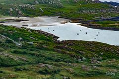 Derrynane-Beach_DSC6263 (Mel Gray) Tags: ireland countykerry ringofkerry beach coast