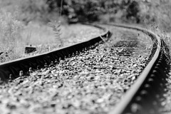 an old, very rusty & long-disused railway line in rural Gascony (grahamrobb888) Tags: d800 nikon nikond800 nikkor afnikkor80200mm128ed france gascony summer sunnymorning holiday contrast blackwhite monochrome monochromecontrast