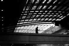 Under the roof's light (pascalcolin1) Tags: paris homme man toit roof lumière light ombres shadows photoderue streetview urbanarte noiretblanc blackandwhite photopascalcolin canon canon50mm 50mm