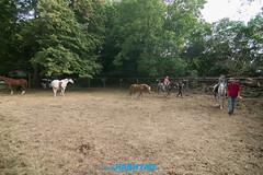 lodenica_piatok-5