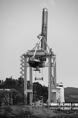 Oslo 2018 - Photocredit Neil King-22 (Neilfatea) Tags: oslo 2018 boattrip crane norway monochrome bw blackwhite