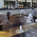 Flusspferd-Brunnen thumbnail