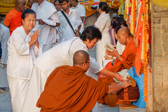 Pèlerins .Pilgrims.  Mahabodhi Temple...India (geolis06) Tags: geolis06 asia asie inde india bihar bodhgaya mahabodhitemple mahabodhi temple bouddhisme boudha buddha unescoworldheritage unesco patrimoinemondialunesco inde2017 pilgrim pélerin moine monk prière prayer devotion dévotion bodhi bodhitree olympuscamera nun buddhism buddhist olympusem5 olympusm75300mmf4867ii