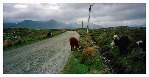 Connemara, Co. Galway, Eire