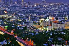 Hollywood (dj murdok photos) Tags: djmurdokphotos sony alpha losangeles hollywood 818 valley city life lights longexposure zoomlens