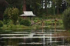 CJG1-49 Tea House & Bridge, Cowden Japanese Gardens (timonrose1) Tags: bridge teahouse cowdenjapanesegardens poolomuckhart clackmannanshire water pond pool landscapegardening gardendesign