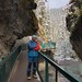 Peyto Lake & Johnston Canyon 2018 09 13