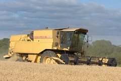 New Holland TX36 Combine Harvester cutting Winter Wheat (Shane Casey CK25) Tags: new holland tx36 combine harvester cutting winter wheat nh cnh yellow fermoy grain harvest grain2018 grain18 harvest2018 harvest18 corn2018 corn crop tillage crops cereal cereals golden straw dust chaff county cork ireland irish farm farmer farming agri agriculture contractor field ground soil earth work working horse power horsepower hp pull pulling cut knife blade blades machine machinery collect collecting mähdrescher cosechadora moissonneusebatteuse kombajny zbożowe kombajn maaidorser mietitrebbia nikon d7200