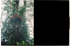 000064 (jovenjames) Tags: 2017 diptych olympus pen eed fujicolor 100 analog penang malysia broken camera snapshots