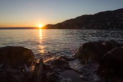 Sunset (bertrandwaridel) Tags: 2018 august lakegeneva lakeleman switzerland vaud vevey lake summer sunset sunsetlight water suisse