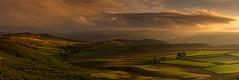 Before Sunset, After the Rain (Peter Quinn1) Tags: derwentvalley derbyshire overstonesfarm sunset hazycloud softlight fieldsandmoor