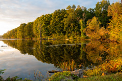 Golden Hour at Esopus Meadows (jeffseverson) Tags: river riverbank reflection water outdoors sunrise dawn reflections trees hudsonriver hudsonvalley newyork upstateny scenichudson