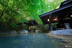 旅馆山河 (fanbaoxian) Tags: japan japanese kumamoto kyushu onsen ryokan thing