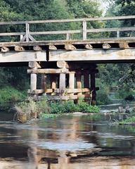 River nooks (fotoswietokrzyskie) Tags: wood water tree grass river landscape mamiyarz67ii kodak ektar100 analog medium format 6x7 evening sekor 250mm bridge