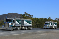 Hi-Quality Group (1/2) (Jungle Jack Movements (ferroequinologist)) Tags: rigid 4 axle dog trailer muscat t610 sar kenworth hi quality group boxers creek goulburn hume highway nsw new south wales australia hp horsepower big rig haul haulage freight cabover trucker drive transport carry delivery bulk lorry hgv wagon road nose semi deliver cargo interstate articulated vehicle load freighter ship move roll motor engine power teamster truck tractor prime mover diesel injected driver cab cabin loud rumble beast wheel exhaust double b grunt divall