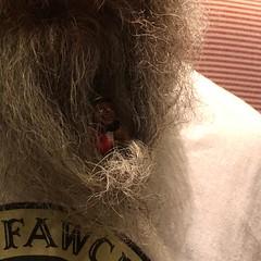 29/08/18 - The last time I saw a man this far into Rusty's beard, it was Foxy. (ordinarynomore) Tags: beardy beardo beard rusty lordrust