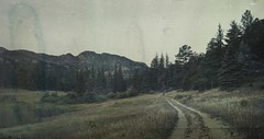 quite before light (jssteak) Tags: canon t1i morning beforesunrise mountains dirtroad trees forest estespark colorado