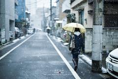 Walking in to the snow (Pop_narute) Tags: walk walking snow snowy white drop winter street road people japanese tokyo japan city life town urban
