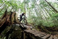 """2018 Fromme Fondo 15 (Jeremy J Saunders) Tags: fromme mountain bike fondo 2018 nikon """"jeremy j saunders"""" jjs north shore vancouver bc british columbia sport forest nsmba"""