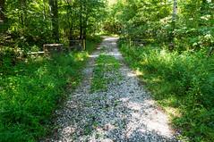 Blue Wall Preserve road - 1 (MarksPhotoTravels) Tags: bluewallpreserve greenvillecounty southcarolina