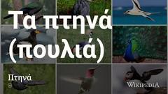 Birds @wikipedia τα πτηνά / πουλιά (dullhunk) Tags: birds wikipedia πτηνά πουλιά πουλια πτηνα bird
