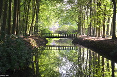 NATURAL (JaapCom) Tags: jaapcom natuur natural wezep ijsselvliedt spiegeling water reflection trees bridge brugje