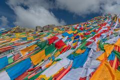 D4I_1466 (riccasergio) Tags: china cina tibet kailash xizangzizhiqu kora alidiqu cn