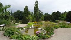 Botanical garden, Berlin (Mado46) Tags: botanicalgarden botanischergarten bxl06 berlin mado46 333v3f