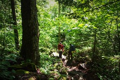 Much Of The Go (michael.veltman) Tags: appalacian trail at vermont backpacking