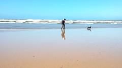 My 2 best friends, Agnes and Peppy (Tunde Tenkei) Tags: beach friends dachshund minidachshund doxie doonbeg clare coclare ireland eire huawei wildatlanticway walkonthebeach reflection sand waves
