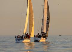 Annalivia ja Donna (Antti Tassberg) Tags: purjehdus donna vene regatta annalivia htr boat helsinki race sailing tallinna uusimaa suomi fi