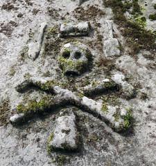 Skull and crossbones (Rodents rule) Tags: highlands scotland niggchurch nigg gravestone skull crossbones carving easterross