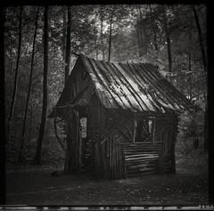 deep in the forest... (*altglas*) Tags: mediumformat mittelformat 6x6 120 film analog expired expiredfilm orwo orwonp27 bw monochrome zeiss superikonta gingerbreadhouse forest wald dark hexenhaus