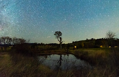 The Milky Way and Rural Landscape (Merrillie) Tags: night glitter landscape winter astrophotography australia rural newsouthwales astro paddock nsw country astronomy outside astrology milkyway sky tree nightsky stars outdoors gresford