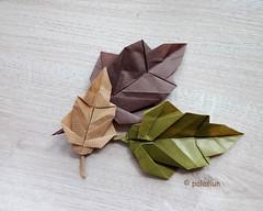 oak leaf origami (polelena24) Tags: origami oak leaves onesheet square