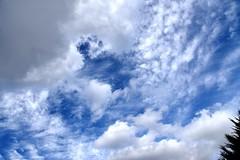 DSC_1604 (PeaTJay) Tags: nikond750 reading lowerearley berkshire gardens outdoors nature blue sky clouds