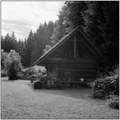 Morning Light (Koprek) Tags: rolleiflex28f planar fuji acros 100 slovenia kamnik morning light rural