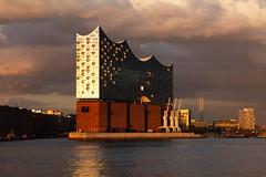 Das beste Abendlicht im Hafen (Lilongwe2007) Tags: hamburg deutschland abendlicht sonnenuntergang elbphilharmonie elphi wolken dämmerung hafencity architektur wahrzeichen hafen elbe spiegelung wasser schiffe
