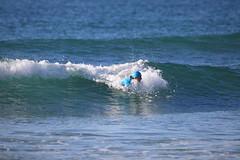 2018.09.15.07.45.07-WhompOffAustralia-059 (www.davidmolloyphotography.com) Tags: bodysurf bodysurfing bodysurfer surf beach whompoff whompoffaustralia australia newsouthwales sydney cronulla