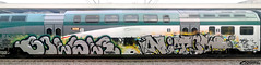 BOESER NITOL (StrangeSpotter) Tags: graffiti graffitiart graffititrain graff traingraffiti train streetart street italy painted paintedtrains