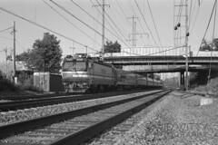 Southbound Cardinal At Bowie (DJ Witty) Tags: amtrak film electriclocomotive rr photography passengertrain railroad nikon aem7 maryland